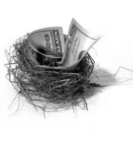 bird's nest stuffed with money